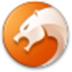 猎豹浏览器 V6.5.115.16